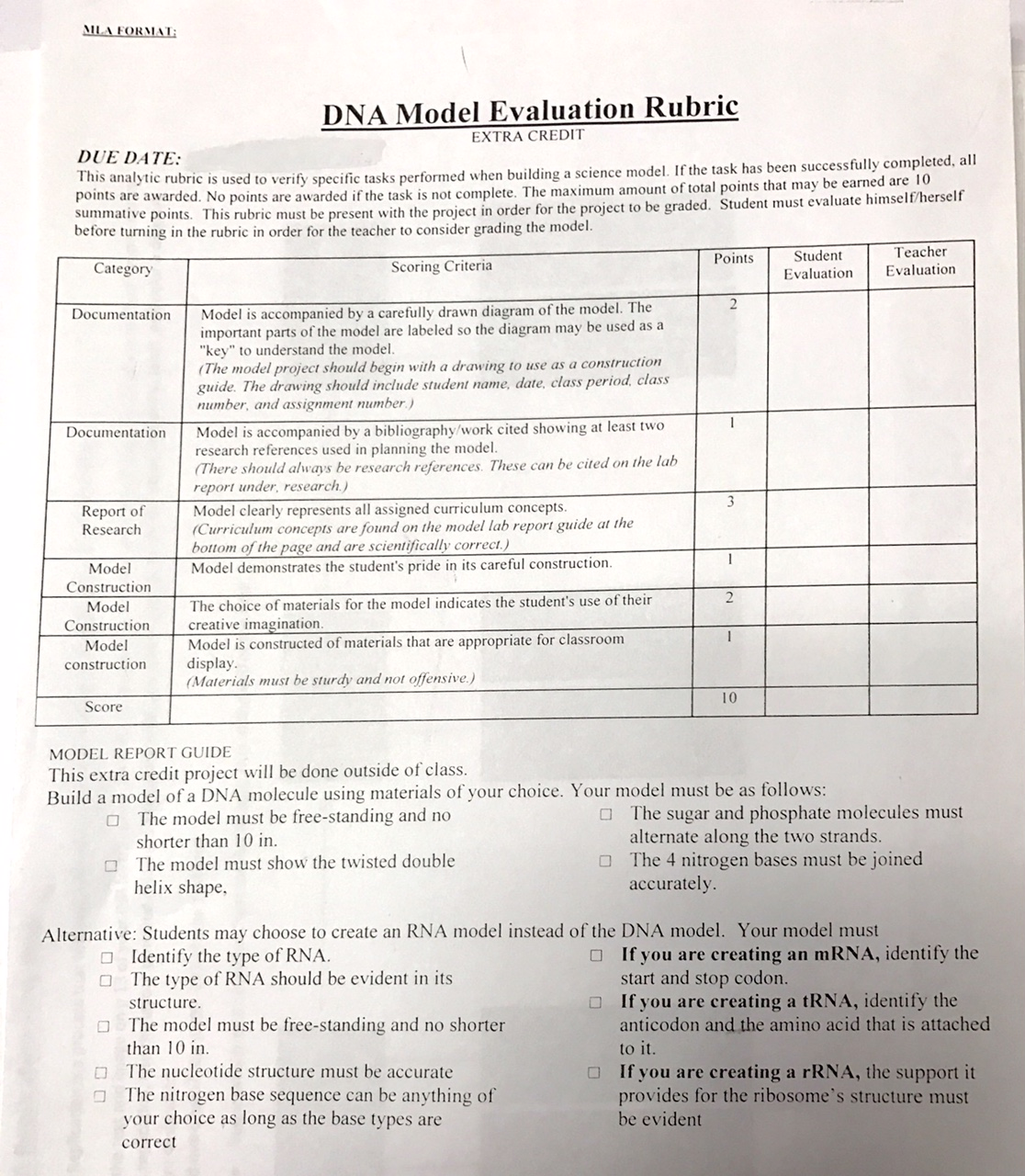 Dna Replication Activity Worksheet – Dna Replication Worksheet