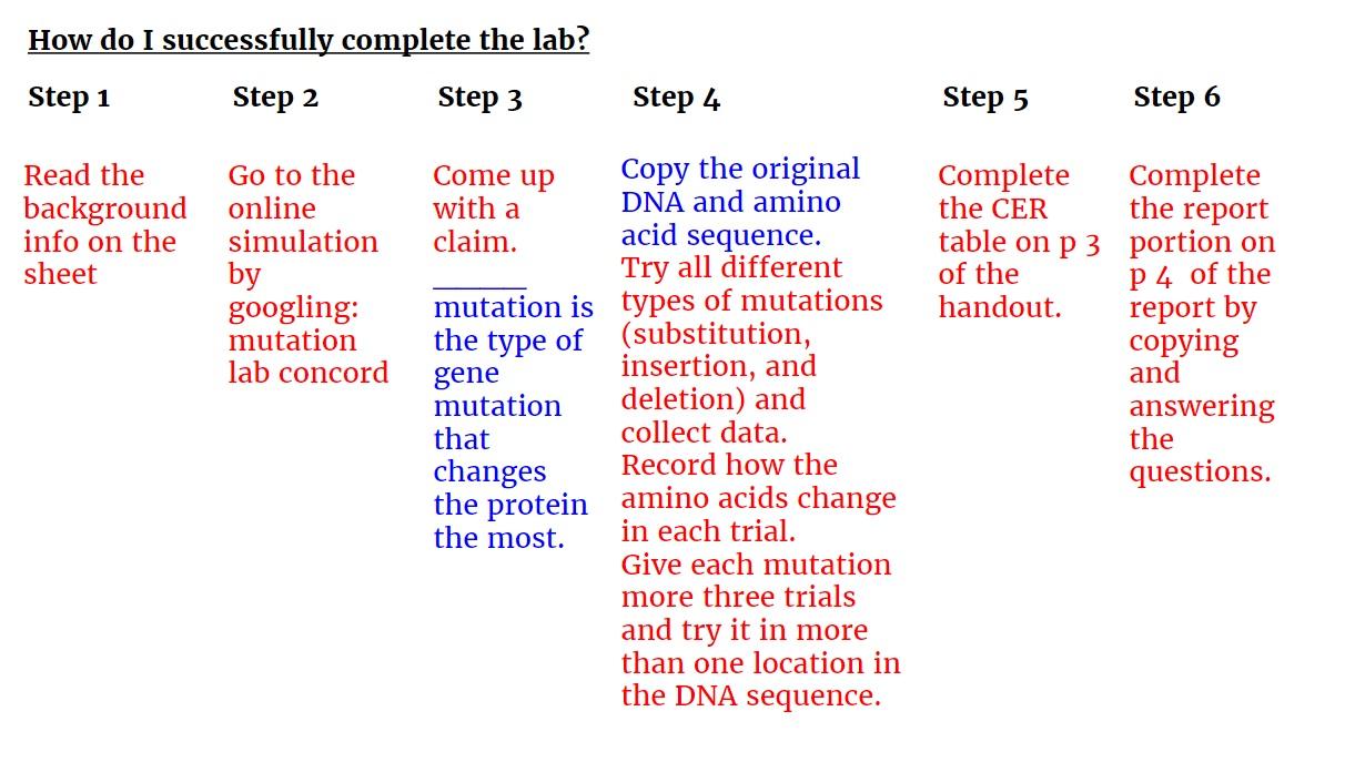 Bazzi`s Biology Blog - Mrs. Farah Bazzi`s Biology and ...