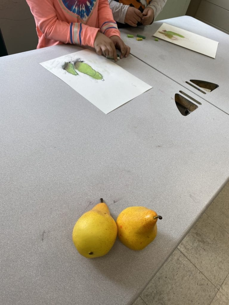 two pears sitting on a table with two students drawing them on paper with chalk