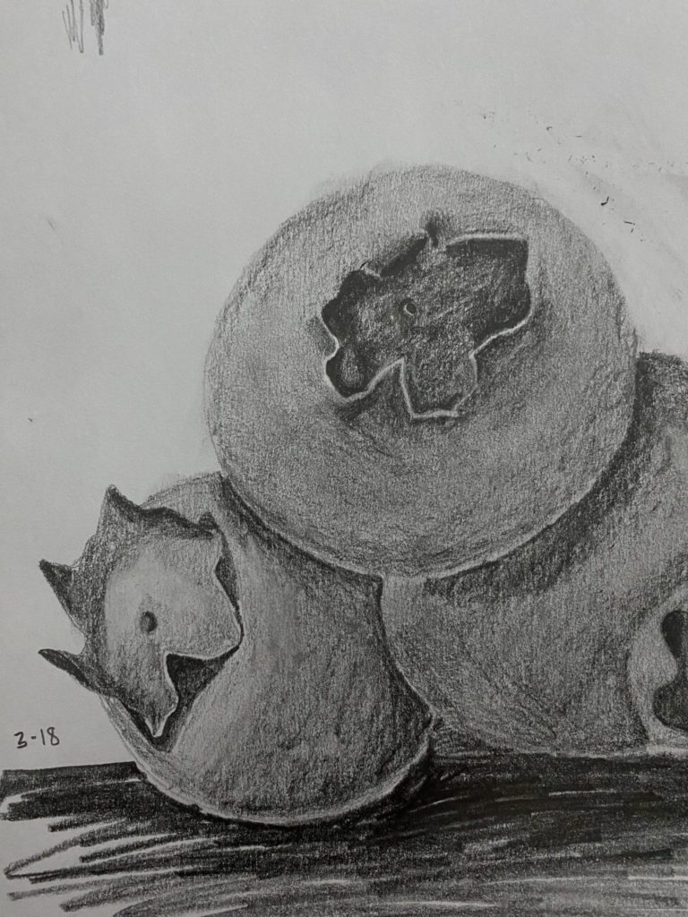 Here is my drawing of three blueberries, they are drawn and colored with pencil.