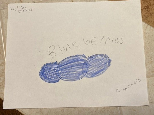 Drawing of three blueberries