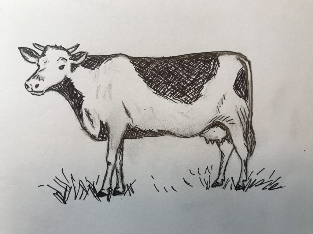 drawing of a cow standing in the grass