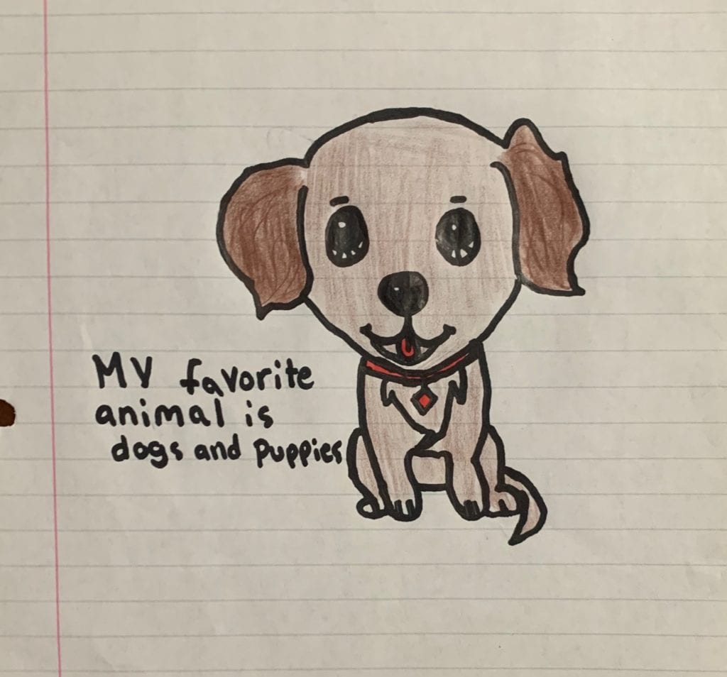 """drawing of a brown dog with a red collar and a sentence that says """"My favorite animal is dogs and puppies"""""""