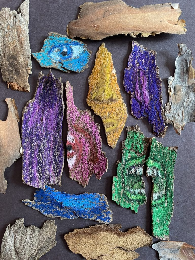 pieces of bark laying on a black piece of paper, some of the pieces have been colored and show parts of the face, not in the correct facial spotr. The nose is yellow, one eye is blue, the mouth is green, and another eye is pink.