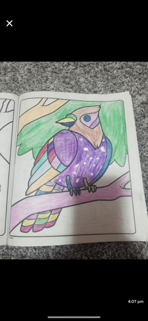 coloring book page or a bird colored in