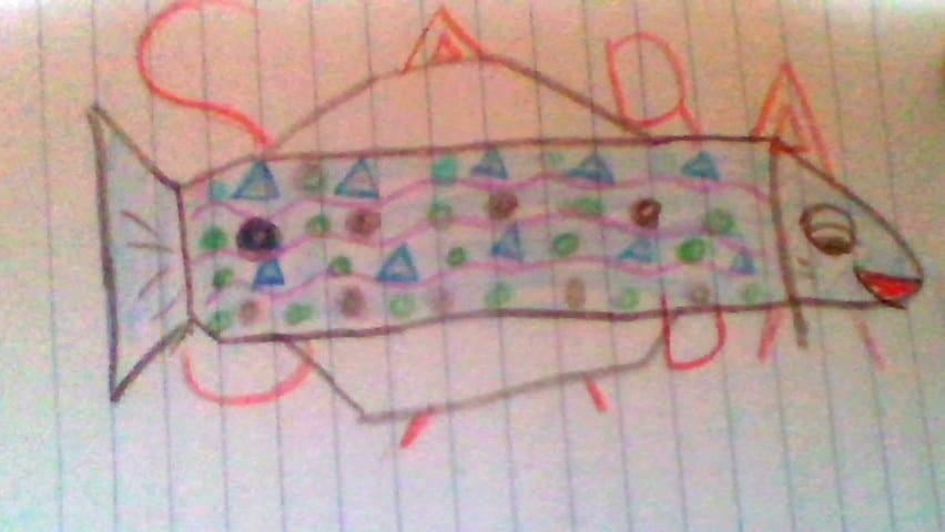drawing of a fish with patterns inside of its body