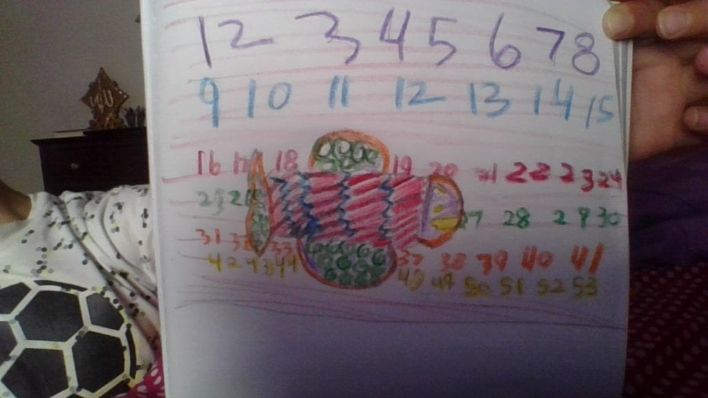 drawing of a fish with a pattern in its body and numbers in the background