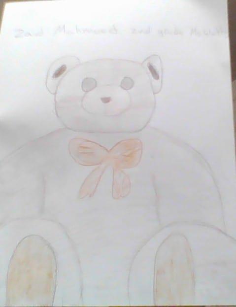 drawing of a stuffed bear
