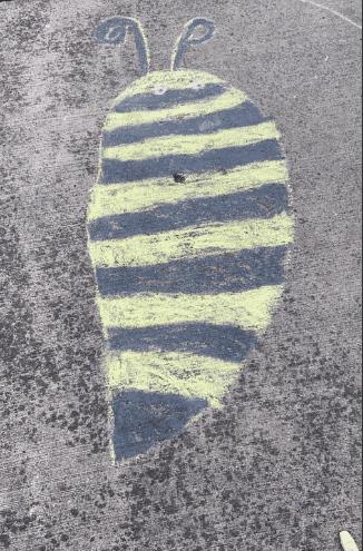 sidewalk chalk drawing of a bee