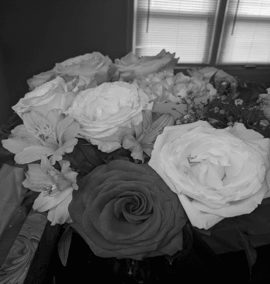 black and white photo of flowers