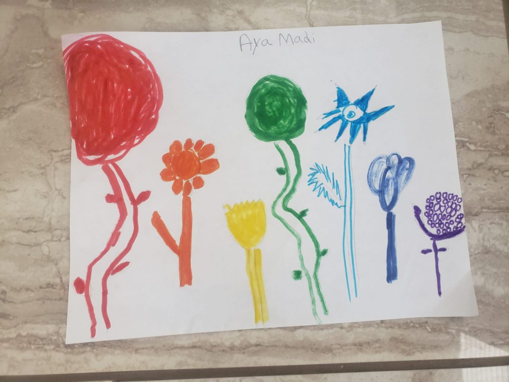 flowers drawn in the rainbow order