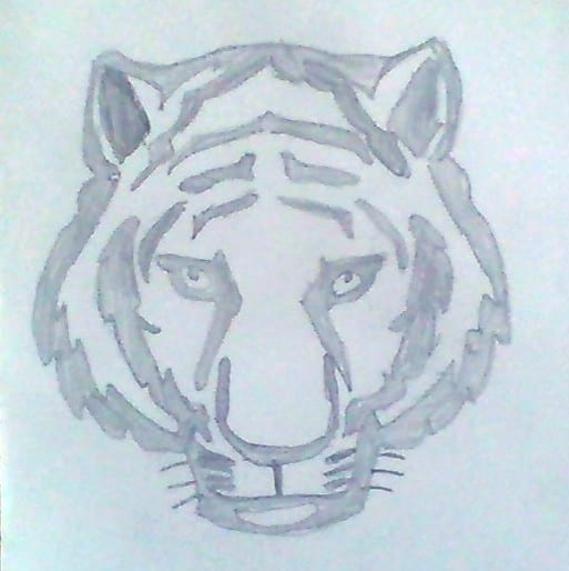 drawing of a tiger face