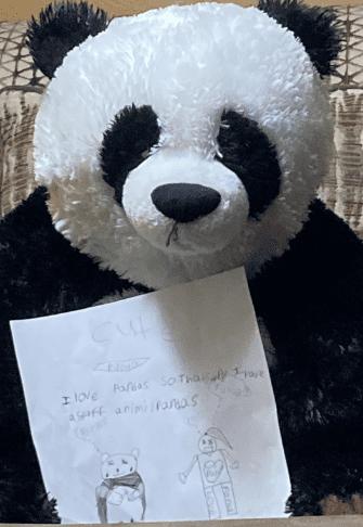 panda stuffed animal next to a drawing of a panda