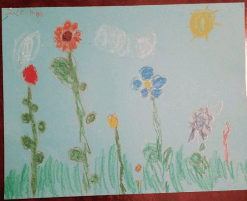 drawing of seven flowers that are colored in the rainbow order