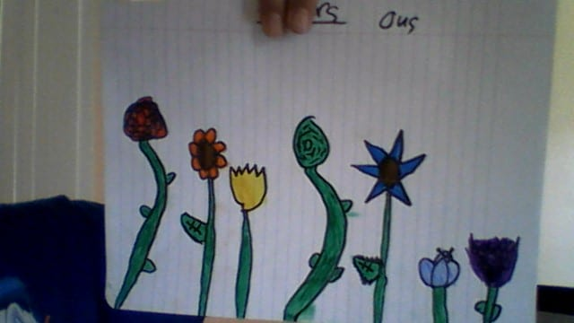 drawing of 7 flowers colored in the rainbow color order