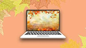 These Autumnal Zoom Backgrounds Are So Festive For Fall