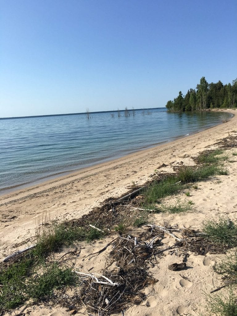 Picture of northern Michigan shoreline
