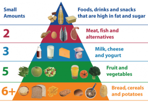 food-pyramid.jpg (590×408) - Google Chrome 2015-11-24 08.48.40