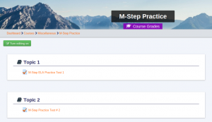 M-Step Practice Course
