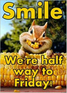 smile we are half way to wednesday